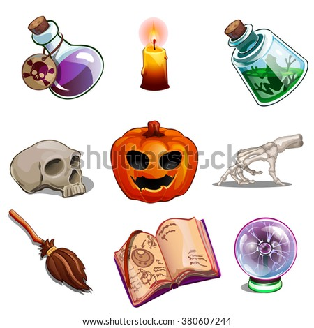 A set of objects for performing occult rites. The attributes of the witch and sorcerer. Vector illustration. - stock vector