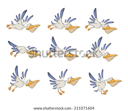 A set of pelicans storyboards - stock vector