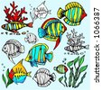A set of 6 vector illustrations of  exotic fishes in color, and black and white renderings. - stock vector