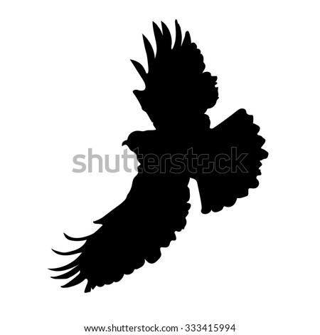 A silhouette of an eagle or hawk in mid flight - stock vector
