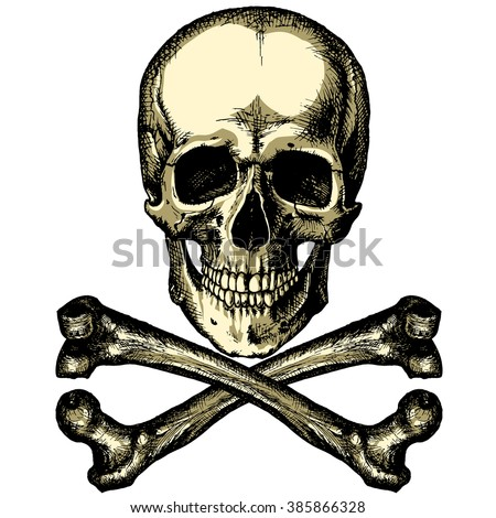 A skull and crossbones on a blank background - stock vector