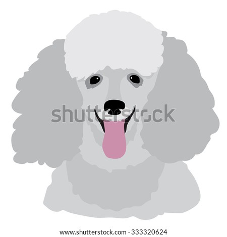 A stylized portrait of a grey toy poodle - stock vector
