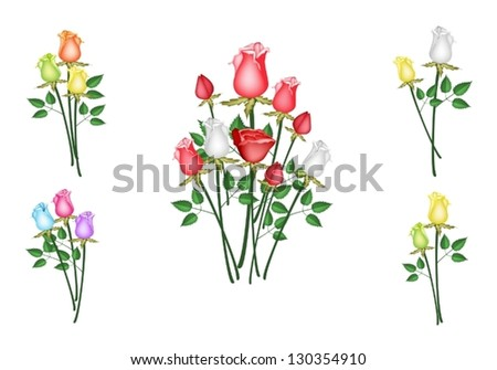 A Symbol of Love, Illustration of Beautiful Roses Arrangements with Different Style Isolated on White Background - stock vector