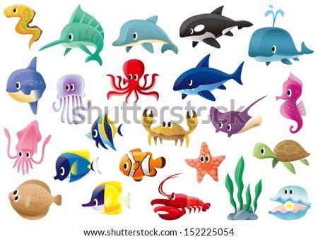 A variety of marine organisms - stock vector
