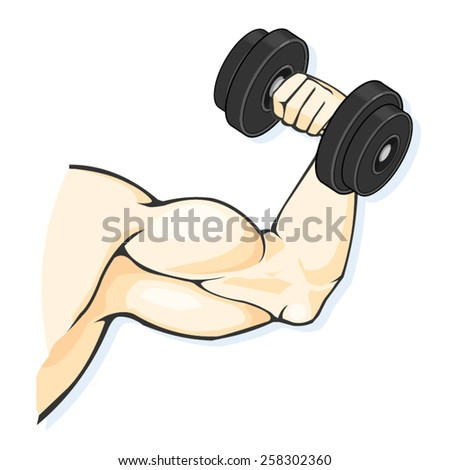 A vector illustration of a muscular man bodybuilding with dumbbell. Bodybuilder. Fit bodybuilder with big muscles. - stock vector