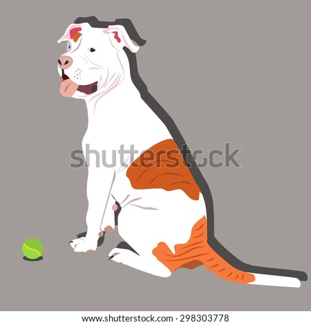 Bulldog Stock Photos And Images  123RF