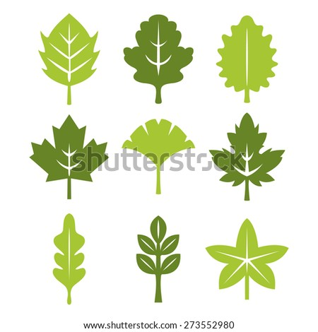 A vector illustration of perfect symmetric leaf silhouette set.