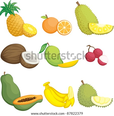 A vector illustration of tropical fruits icons