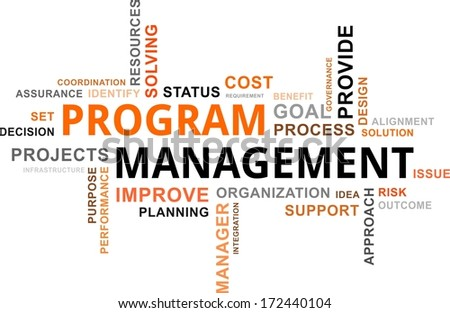 A word cloud of program management related items - stock vector