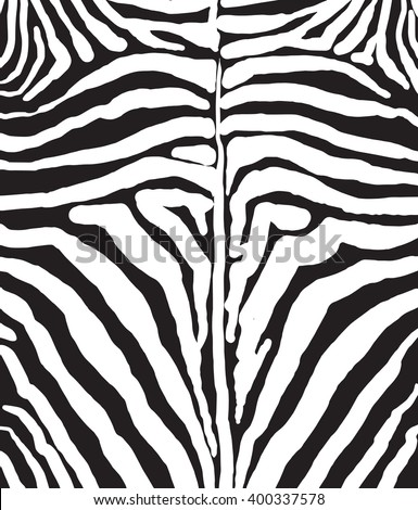 Abstract African pelt background. Black and white stripes. Template for brochure, Folders covers, Holiday cards, Scrapbook. Black stripes on white background. Digital illustration Vector illustration