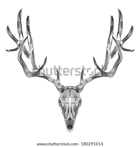 Deer Skull Stock Images Royalty Free Images Amp Vectors