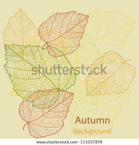 Abstract autumn beauty background with text for wallpaper, texture, poster, pattern, label, emblem, sign, frame, decoration, grungy ornament, illustration, border, brochure vector eps 8 - stock vector