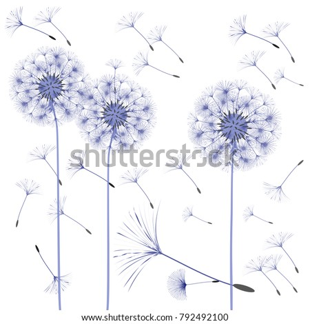 abstract background dandelion design wind blows stock vector