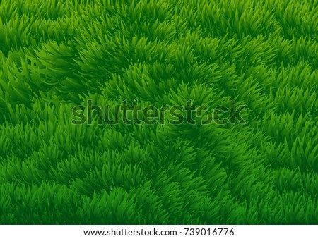 grassy field background. Abstract Background Of Green Grassy Field - Vector Illustration Grassy Field Background