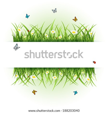 Abstract background with flowers, butterflies and ladybugs, illustration. - stock vector