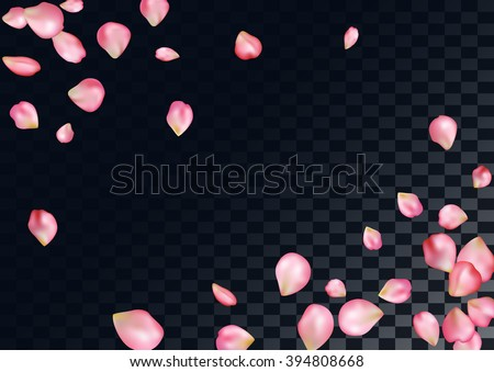 Abstract background with flying pink rose petals. - stock vector