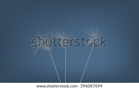 Abstract background with strange Dandelion illustration. Illustrated vector. Blue background
