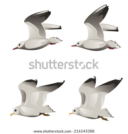 Abstract cartoon flying seagulls illustration on white background. - stock vector