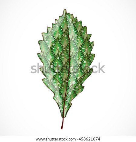 Abstract colorful leaf. Illustration 10 version - stock vector