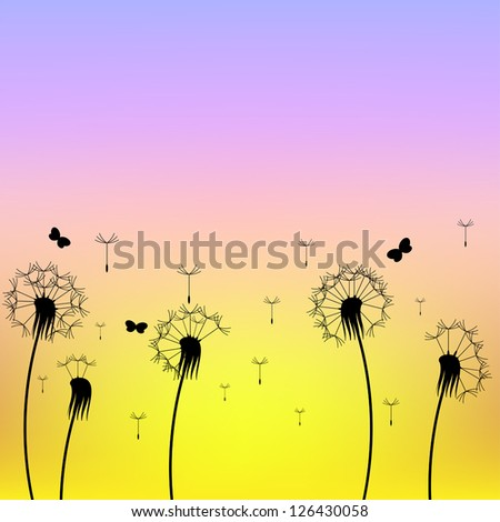 abstract dandelions silhouettes at the sunset background vector