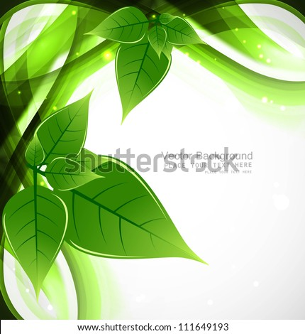 abstract eco green lives line wave Vector design