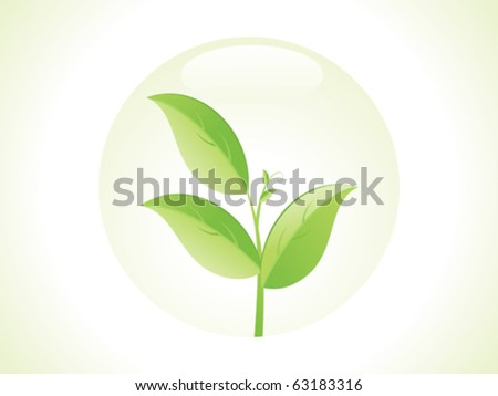 abstract eco leaf vector illustration
