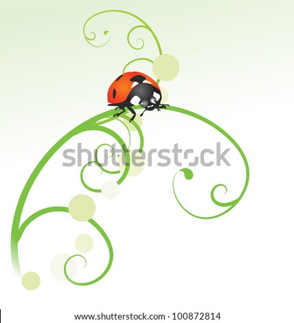 abstract grass curv with ladybird isolated on white - stock vector