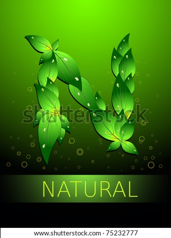 abstract green circle background with N in leaf shape - stock vector
