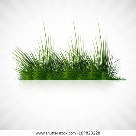 abstract green grass with reflection vector whit background illustration - stock vector