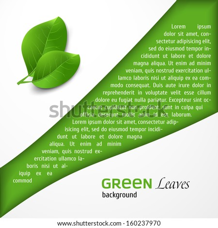 Abstract green leafs background - stock vector