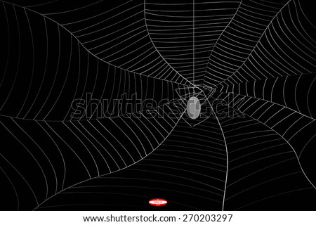 abstract grey spider web or cobweb with spider with gray line isolated on black background.vector illustration