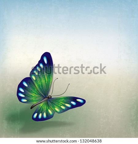 abstract grunge background with butterfly on gray - stock vector