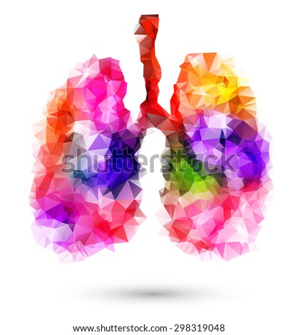 Abstract human lungs with multicolored polygon on white background - stock vector