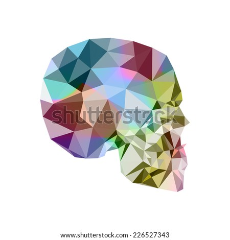 abstract human skull. Vector illustration.