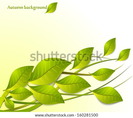 Abstract leaves - stock vector