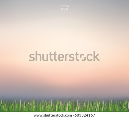 Abstract nature background of green grass and sunset sky. Vector illustration.