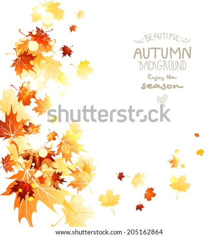 Abstract swirl of beautiful leaves isolated on white background - stock vector