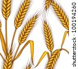 Abstract textured wheat field. Seamless pattern. Vector. - stock photo
