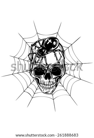 Abstract vector illustration human skull with spider and web