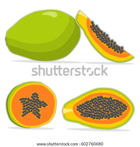 Abstract vector illustration logo whole ripe fruit papaya,green stem leaf,cut sliced,background. Papaya pattern consisting of tag label,natural sweet food. Eat fresh raw organic fruits,exotic papayas.