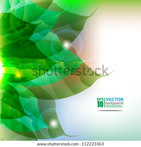 abstract vector leaf design eps10