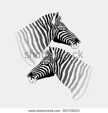 abstract vector silhouette of the head 2 black and white zebra looking in different directions on a white background. wallpaper. cloth.
