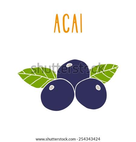 Acai berries. Vector EPS 10 hand drwn illustration - stock vector