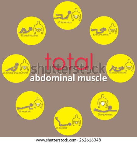 adbomianal muscle on yellow circle - stock vector