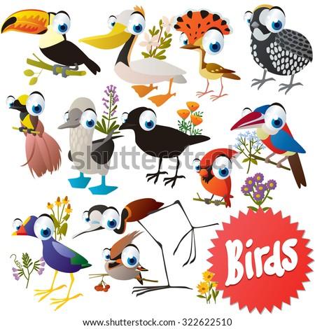 Adorable cartoon comic birds set: toucan, pelican, cock, quoll, boobie, bird of paradise, crow, cardinal, waxwing - stock vector
