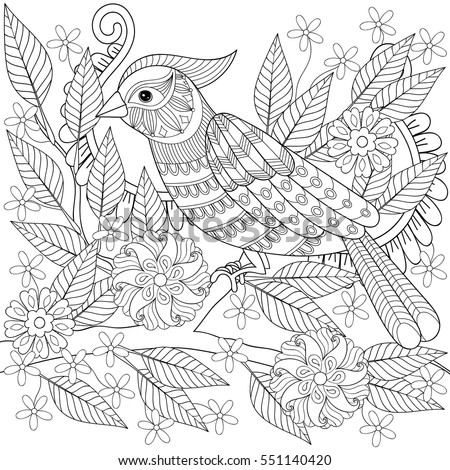 Adult Anti Stress Coloring Page With Tropical Bird Hand Drawn Zentangle Parrot Sitting On Blooming