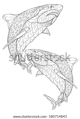 Adult Coloring Bookshark Freehand Sketch Adult Stock Vector HD ...