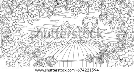 Adult Coloring Illustration Of New Zealand Vineyard