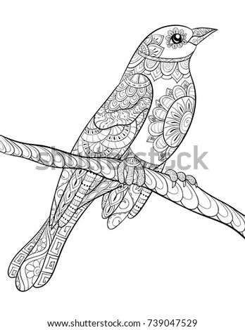 Adult Coloring Pagebook A Cute Bird On BrunchZen Art Style Illustration