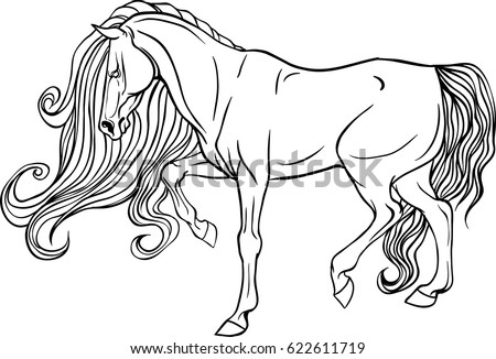Adult Coloring Page Antistress Art Therapy Stock Vector 622611719 ...